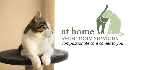 Mobile Veterinary Care - The Parkway Veterinary Hospital