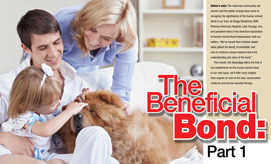 Vet-Advantage Magazine: The Beneficial Bond