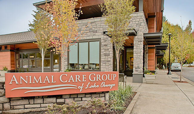 Animal Care Group of Lake Oswego